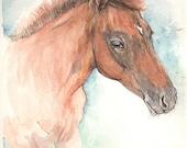 Custom order, oryginal foal portrait, listing reserved for DOBLELL