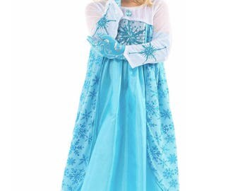 Ice Queen Blue Dress up costume