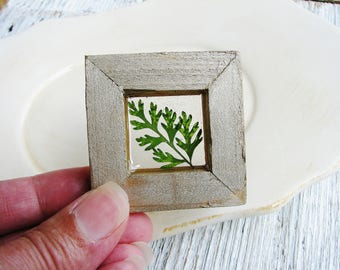 Fern Magnet, Tiny Fern Art, Small Plant Art, Framed Botanical Art, Magnet, Nature Lovers, Minimalist Decor, Wall Art, Shelf Art, Garden Gift