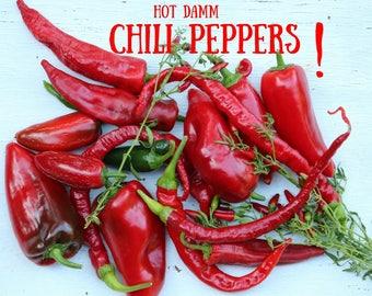 Chili pepper kitchen | Etsy