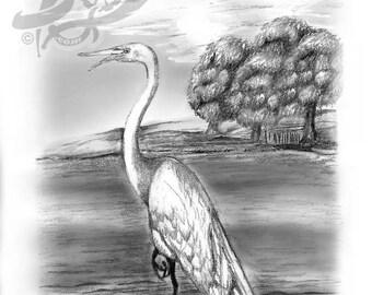SUMMER SALE: NEW - Tranquil Great Egret pen pencil FiNe Art print!