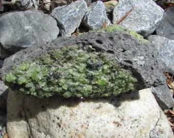 Xenolith Green Peridot in Basalt Specimen