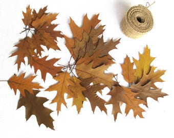 Pressed dried Oak leaves  Card making  Botanical Craft supply home decor autumn wedding table DIY, Brown, set of 25