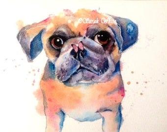 Cutie Pug Puppie