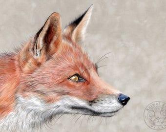 Red Fox Art - Hand embellished & signed fine art Giclee print of 'Monsieur Renard'