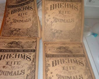 Brehms Life of Animals 27 books,educational These date to 1895