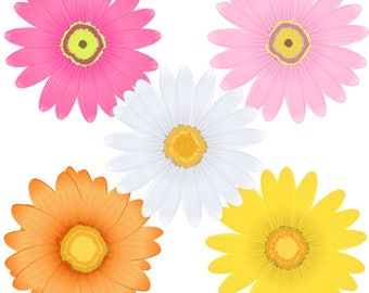 Daisy Flowers Clipart, Daisies, Floral, Summer, Spring, Clip Art - Instant Digital Download