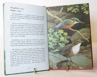Pond and River Bird Spotting, vintage Book with Illustrations Ornithology Red guide gift retro birds