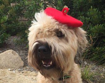 Mini Beret Pet Hat (6 colors)