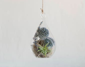 DIY Terrarium Kit, Air Plant Terrarium Kit, Hanging Terrarium Kit, Flower Terrarium, Flower Decor, Woodland Decor, Flower Gift, Mom Gift