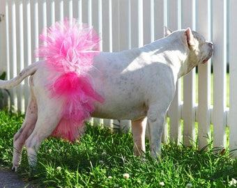 Pink Dog Tutu -Dog tutu-Flower girl-Pet Clothing -Dog Gift -Dog Photo -Multi color dog tutu - Pet Accessory-Dog Costume-Pet Tutu-Pet Collar