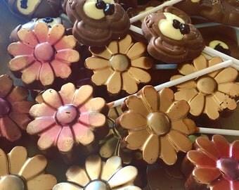 Pack of 10 Belgian chocolate lollipops