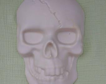 Plaster of Paris skull