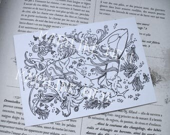 coloring postcard coloring Orca