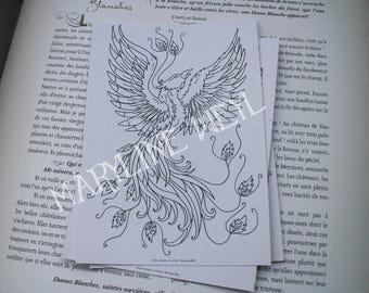 coloring postcard coloring Phoenix Bird