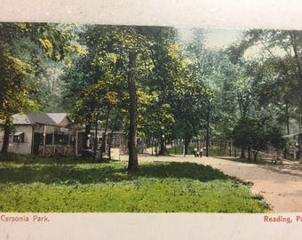 Vintage Postcard Reading Pa Carsonia Park Postcard Berks County Early 1900's