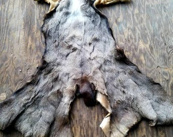 Beautiful Tanned Deer Hide, Tanned Deer Skin, Wapiti, Fur, Throw Rug, Animal Cape, Primitive Crafts, Cosplay Costume Supplies, Soft Leather