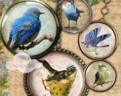 80% off Mothers Day Sale Magical Birds Bottle Cap Round Circle Images for Bottlecap Pendants Jewelry Making Decoupage 1 Inch Digital Collage