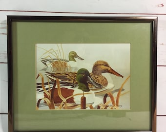 Duck Watercolor    Federal Duck Stamp    Contest Entry Signed       Print Framed & Matted