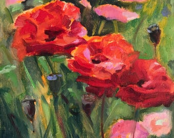 Red filled poppies