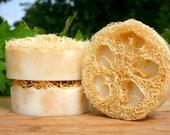 Black Coconut Luffah Triple Butter Soap for Skin Brushing