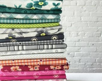 Washington Depot Collection by Denyse Schimdt Fat Quarters Bundle