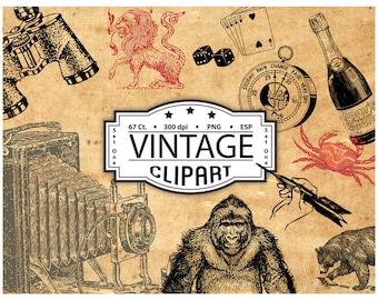 17 International Travel Clip Art Vintage Luggage Labels