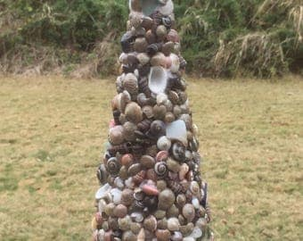 Seashell Tree