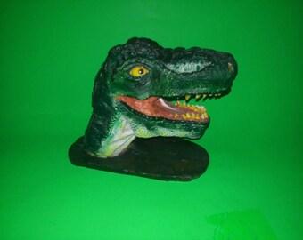 Head of Tyrannosaurus