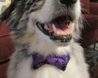 Dog Bow Tie Adjustable Halloween Purple and Black Cats