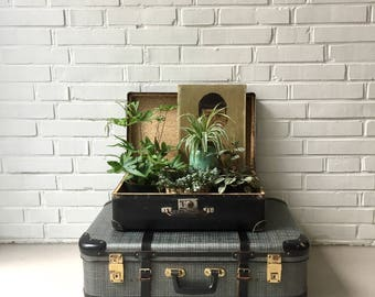 Vintage suitcases, old suitcases, mid century overseas case, 60ziger years, travel accessories, hard shell case