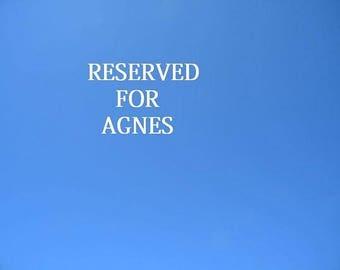 RESERVED for Agnes! Monster High repaint, Monster High OOAK, Monster High custom of Lalarossa, Frankie, BJD, Rose Mary