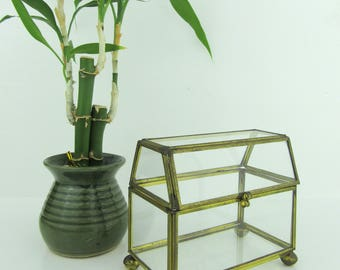 Brass and Glass Box with Hinged Lid~Small Windowsill Terrarium Suculents~Vintage Trinket Box Jewelry Box Catch All