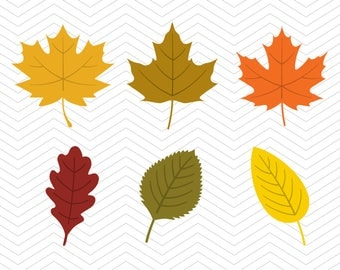 Fall Leaves SVG DXF PNG eps Autumn leafs thanksgiving Cut File for Cricut Design, Silhouette studio, Sure A Lot, Makes the Cut
