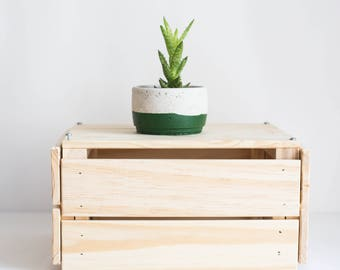 Succulent Planter, HUNTER GREEN, Concrete Planter, Minimalist Planter, Concrete Decor, Geometric Planter, Plant Pot, Concrete Pot, Vessel