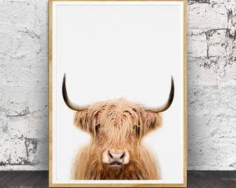 Highland Cow Print, Cow Wall Art, Highland Cow Wall Art, Cow Print, Farm Animal Wall Art, Farm Animal Print, Nursery Animals, Nursery Print