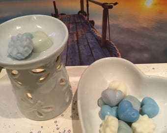 Crystal Waters Highly Scented Soy Wax Melts