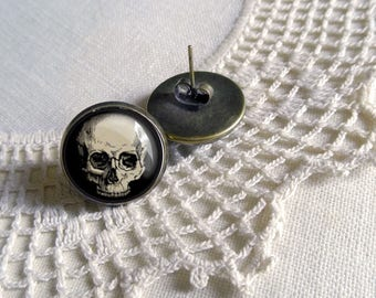 Human Skull  Stud Earrings