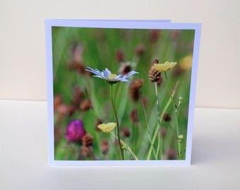 Original design 'Meadow' greetings card, 6'' x 6'', with envelope