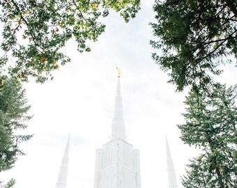 Portland Oregon Temple 3