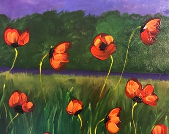 night field with poppies