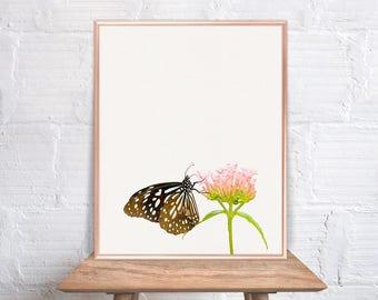 Butterfly wall art / Butterfly home decor / Butterfly Print / Butterfly on green leaf / Butterfly Art / Butterfly Wall Decor #49