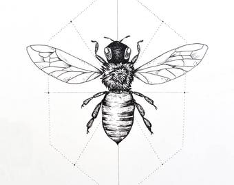 Bee Print, 8x10