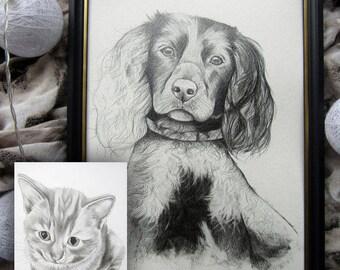Custom Pet Drawing, Pet Drawing, Pet Portrait, Pet Portrait Drawing, Custom Drawing, Custom Gift, Pet Loss Gift, Cat Drawing, Dog Drawing