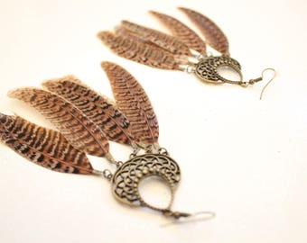 Brown natural Pheasant feather earrings