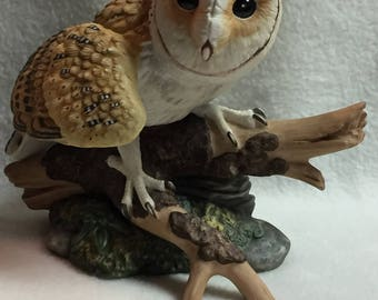 Hamilton Collection Majestic Owls of the Night - Barn Owl on Tree Branch (#122)