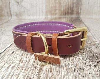 Lined Classic Buckle Leather Dog Collar - 1'' (large)