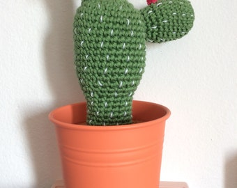 Cactus Amigurumi on order crochet
