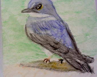 Tree Swallow Watercolor Painting, Original Painting, Bird Watching