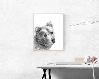 Grizzly Bear Illustration Print - Bear Art - Grizzly Bear Drawing - Grizzly Bear Illustration - Bear Wall Art Print - Brown Bear Drawing